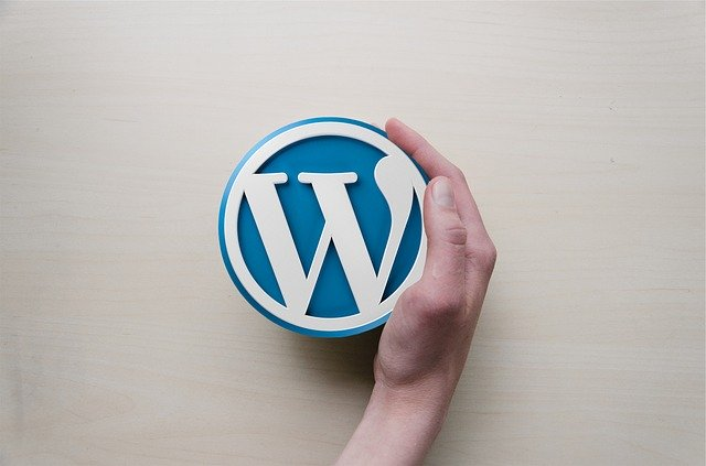 WordPress logo dlaň.jpg